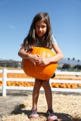 I am sure she is thinking she should have picked a smaller pumpkin.