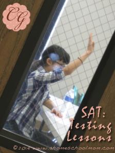 SAT Testing Lessons