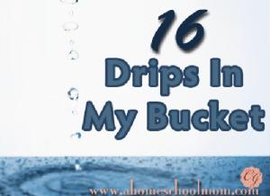 16 Drips in My Bucket