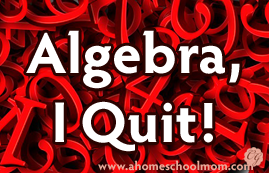 Algebra, I Quit