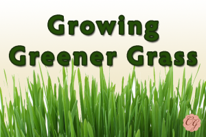 Growing_Greener_Grass