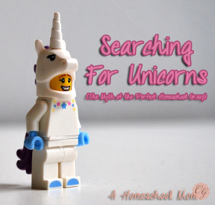 Searching_Unicorns