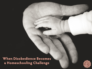 when_disobedience_becomes_challenge