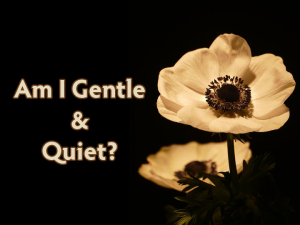 am_i_gentle_quiet