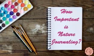 How Important Is Nature Journaling?
