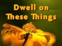 Dwell_TheseThings