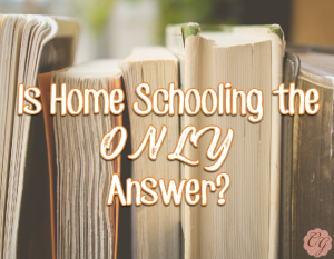 Is Home Schooling the ONLY Answer?