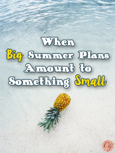 Big_Summer_Plans_Amount_to_Small
