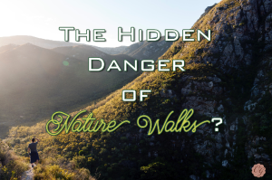 The_Hidden_Danger_of_Nature_Walks?