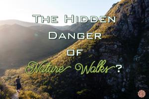 The_Hidden_Danger_of_Nature_Walks?