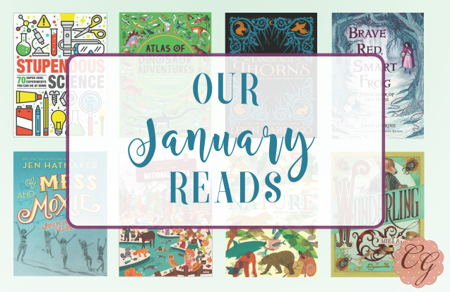 our_january_reads