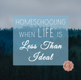homeschooling_when_live_is_less_than_ideal