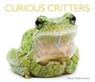 curious_critters