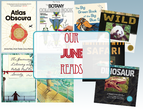 our_june_reads_2018